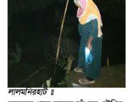 উত্তরের জেলা লালমনিরহাটে নারীরাও রাতের আঁধারে সৌখিন মাছ শিকারী হিসেবে পিছিয়ে নেই